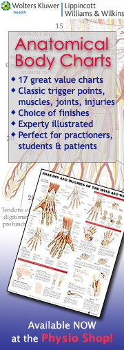 Anatomical Charts at The Physio Shop